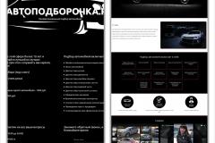 autopodborochka-do-i-posle